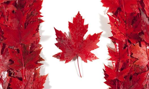 A la découverte de l'univers multiculturel Canadien